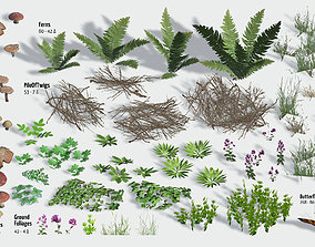 Ground Foliage from Forest 3D model low-poly