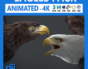 3D animal Animated Eagles