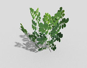 Low poly Plant 3D model game-ready