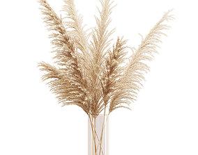 3D model Big dried flower pampas grass in glass