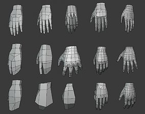 3D asset LP Hands base mesh