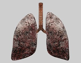 Smoker Human lungs fully rigged low poly 3 3D model