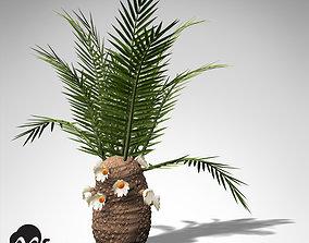 3D model XfrogPlants Cycadeoidea Gigantea