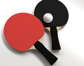 Table Tennis Set 3D