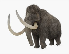 3D model Woolly Mammoth Rigged with Fur