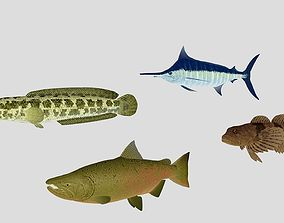 3D model Fish Collection 03