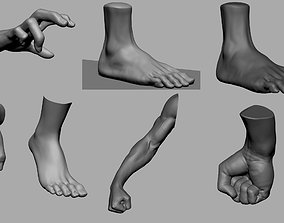 Hand Foot Collection 3D model
