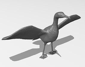 Great Cormorant printable