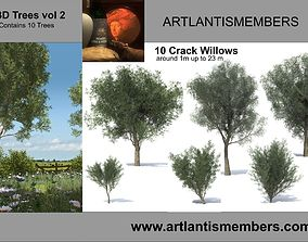 3D tree vol 2 crack willow