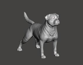 3D printable model Rottweiler Dog