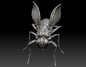 3D housefly