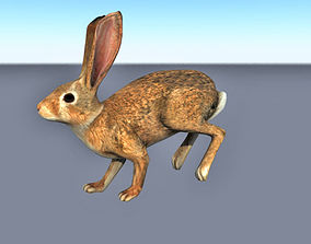 3D model VR / AR ready Animated running rabbit low poly