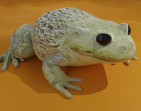 Low-Poly PBR Toad - Crapaud 3D model