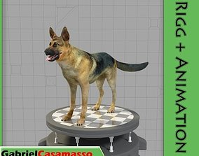 German Shepherd 3D asset animated