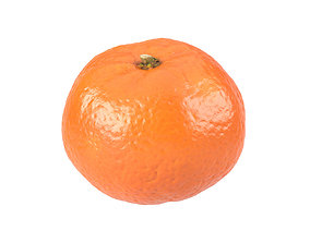 Photorealistic Clementine 3D Scan