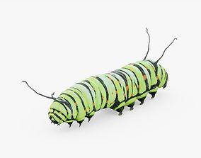 Caterpillar 02 3D asset
