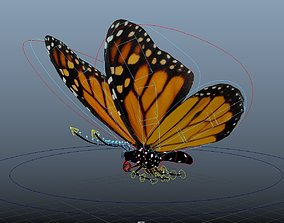 Butterfly rigged and animated 3D asset