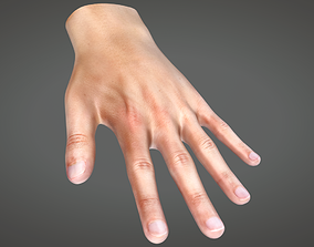 Human Hand 3D model animated