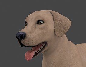 MLAB-022 Animated Dog 3D