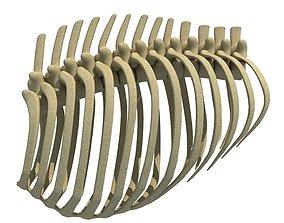 Mammal Animal Rib Cage 3D model