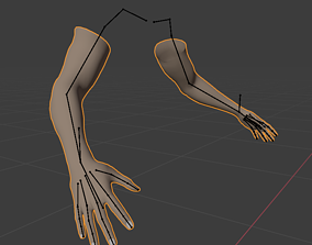 3D model rigged FPS Hands