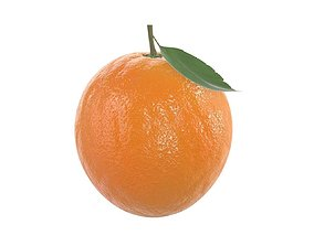 orange with leaf 3D