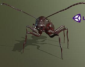 Worker Ant 3D asset