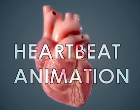 Human Heart - heartbeat animation 3D asset
