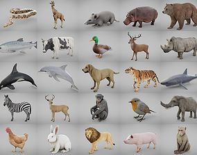 3D asset Ultimate Animal Collection