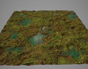 3D model PBR seamless jungle swamp ground textures
