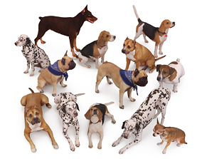 Scanned Dog Collection x13 3D model
