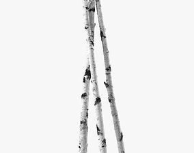Birch branches 3D model sprig