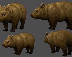 3D model Wombat