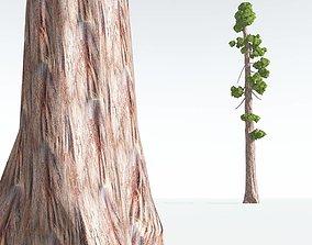 game-ready EVERYPlant Coastal Redwood Cartoon 08 --12