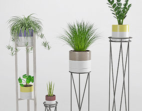3D model Houseplant 35