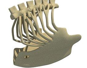3D model Eagle Ribcage Skeleton