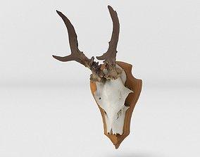 Deer Head 3D model VR / AR ready