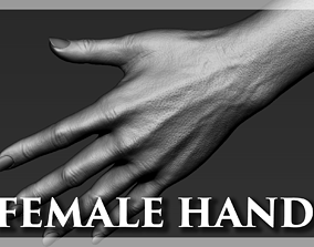 3D model Female Hand Realistic
