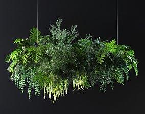 Hanging Plants 02 3D