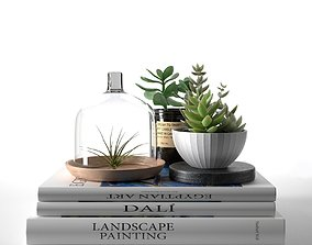 3D Books with Succulents and Air Plant