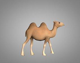 3D model animated VR / AR ready Camel