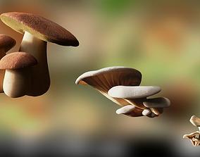 Game ready PBR Mushrooms 3D model SET 1 realtime