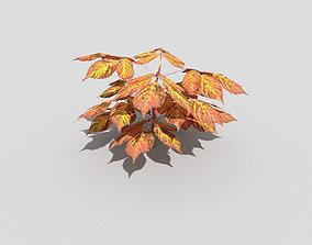 3D asset realtime Low poly Plant low shrub