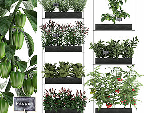 Vertical garden for the kitchen 70 3D