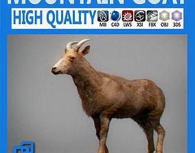 3D model Mountain Goat