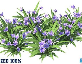 Babiana Blue Flower Optimized 3D model