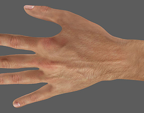 3D model high resolution hand ready for close