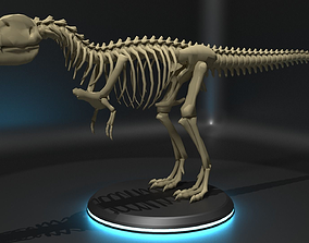 Tyrannosaurus Skeleton - Blockout 3D model