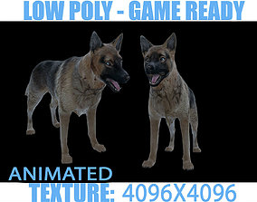 3D asset Dog Animated