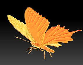 butterfly 3D print model nature